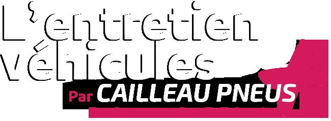 Cailleau Pneus